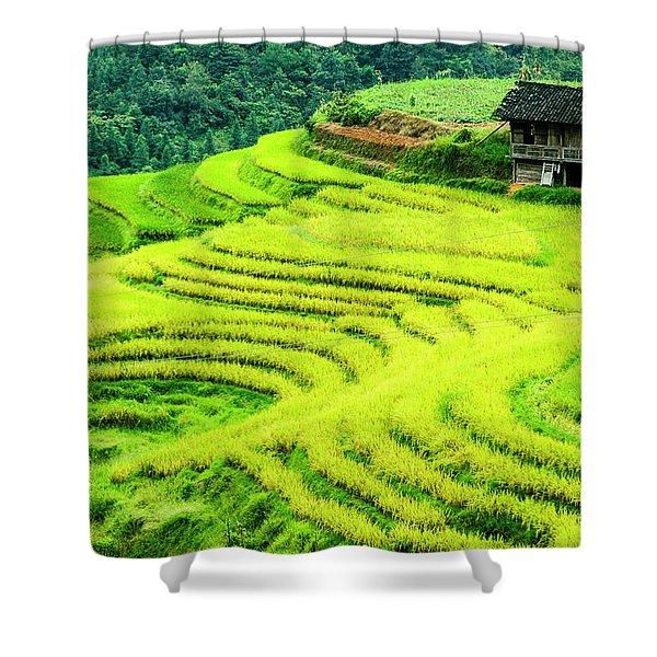 The Terraced Fields Scenery In Autumn Shower Curtain