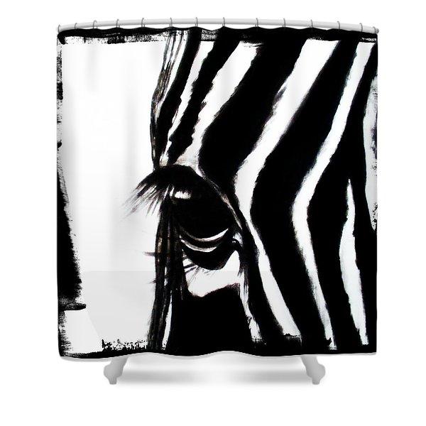 The Three Musketeers - Zebra Shower Curtain