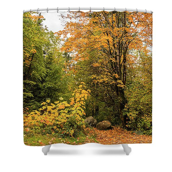 The Trail Starts Here Shower Curtain