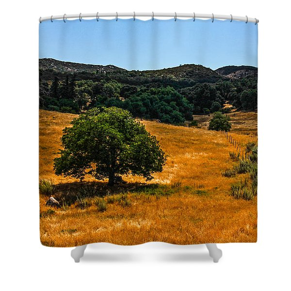 Shower Curtain featuring the photograph The Tree by Break The Silhouette