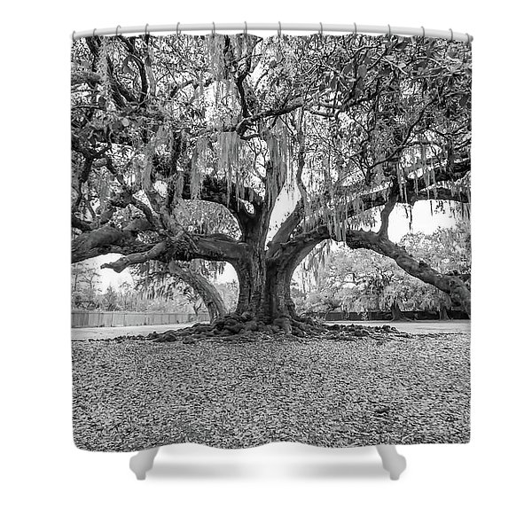 The Tree Of Life Monochrome Shower Curtain