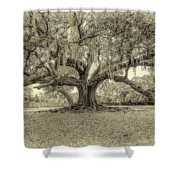 The Tree Of Life Sepia Shower Curtain