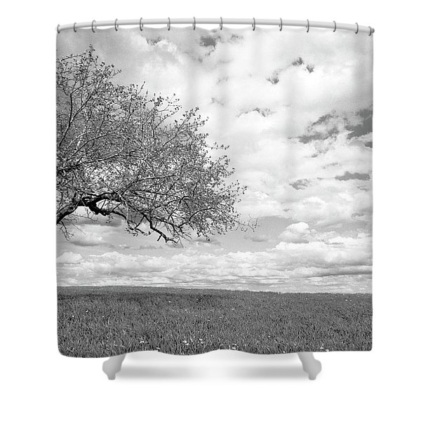 The Tree On The Hill Shower Curtain