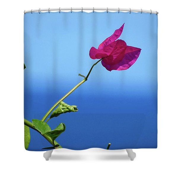 The Tropical Bloom Shower Curtain