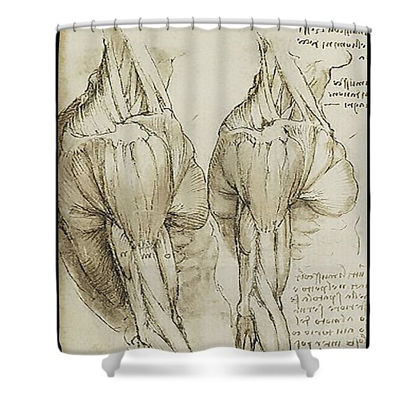 The Upper Arm Muscles Shower Curtain