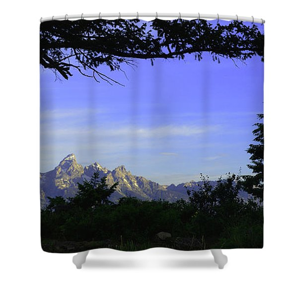 The Wedding Trees Shower Curtain