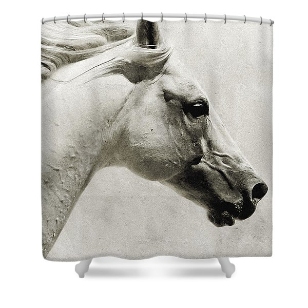 The White Horse IIi - Art Print Shower Curtain