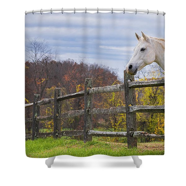 The White Horse Shower Curtain