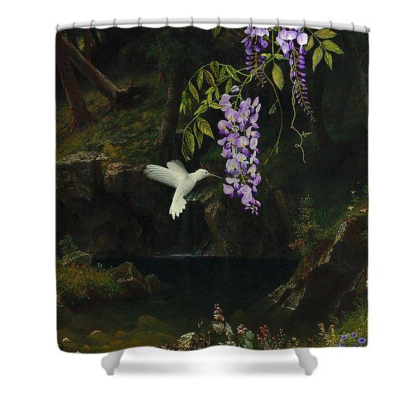 The White Hummingbird Shower Curtain