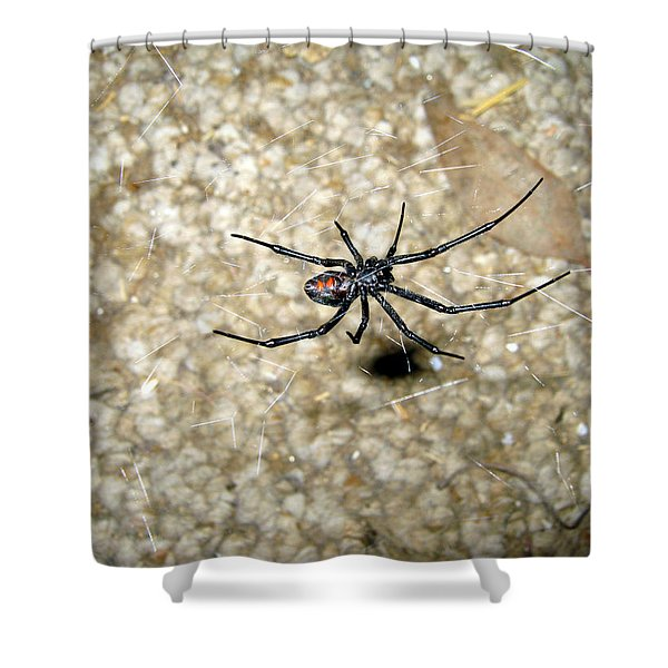 The Widow Shower Curtain