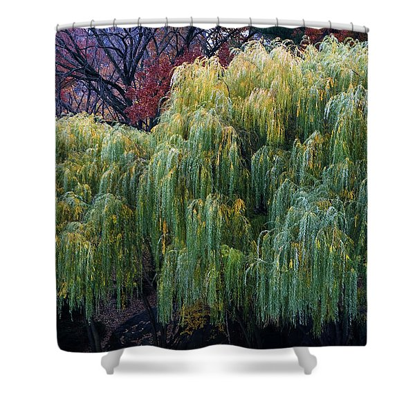 The Willows Of Central Park Shower Curtain