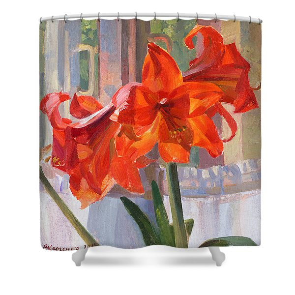 The Window Shower Curtain