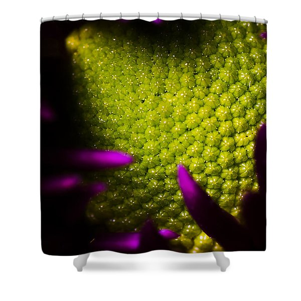 The World Within Shower Curtain