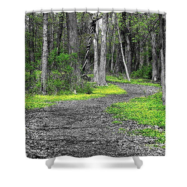 The Yellow Marsh Marigolds Of Spring Shower Curtain