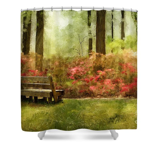 The You You Used To Be Shower Curtain