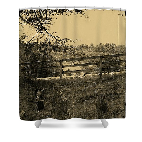Then And Now Shower Curtain
