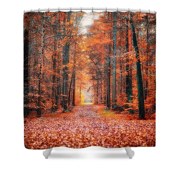 Thetford Forest Shower Curtain