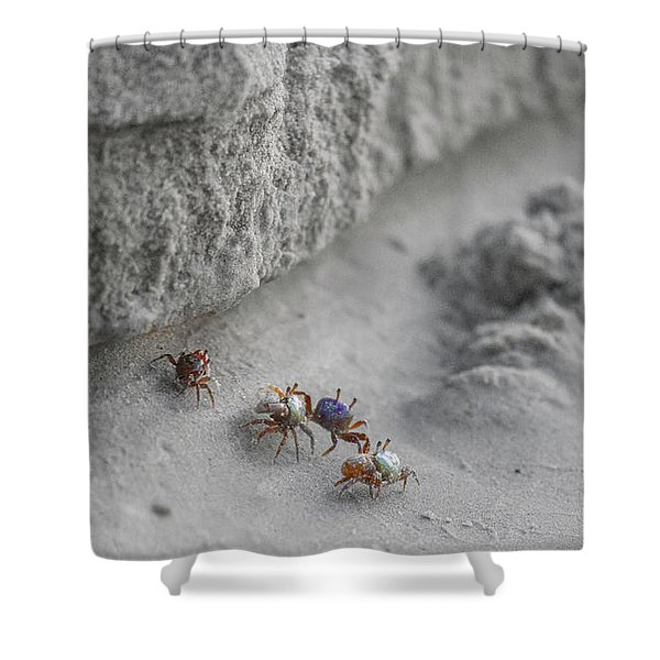 They'll Never Find Us Here Shower Curtain