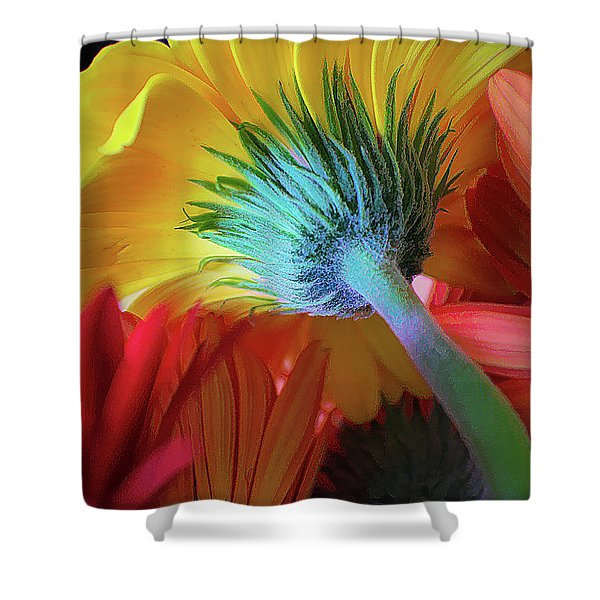 Think Spring Shower Curtain