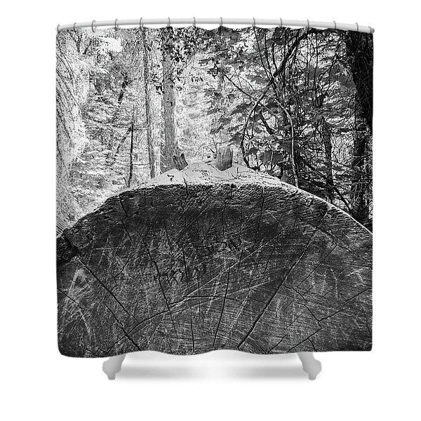 Thinking Tree- Shower Curtain
