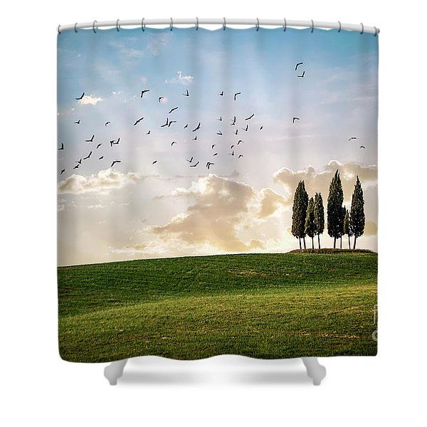 This Majestic Land Shower Curtain