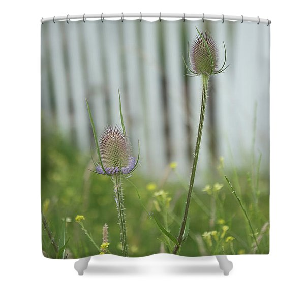 Thistles Shower Curtain