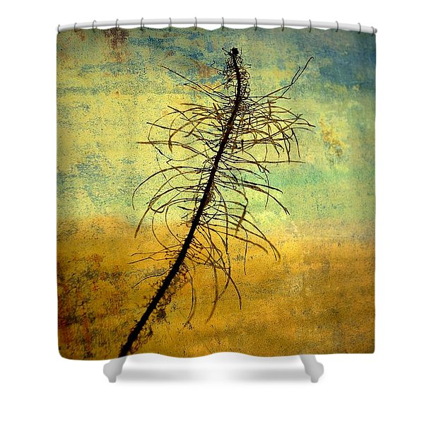 Thoughts So Often Shower Curtain