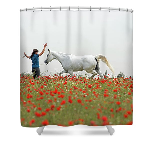 Three At The Poppies' Field Shower Curtain