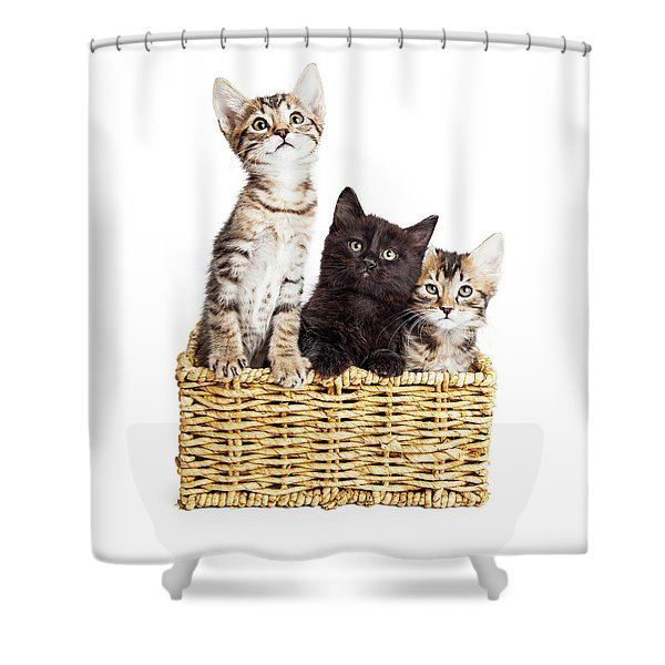 Three Cute Kittens In Basket Shower Curtain