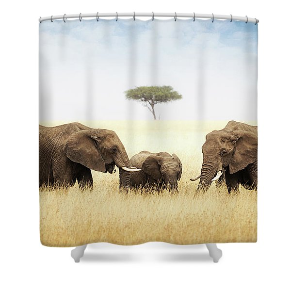 Three Elephant In Tall Grass In Africa Shower Curtain