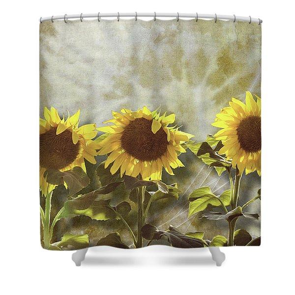 Three In The Sun Shower Curtain