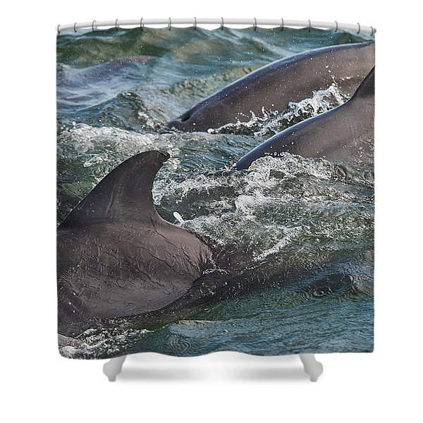 Three Peas In A Pod - Color Shower Curtain