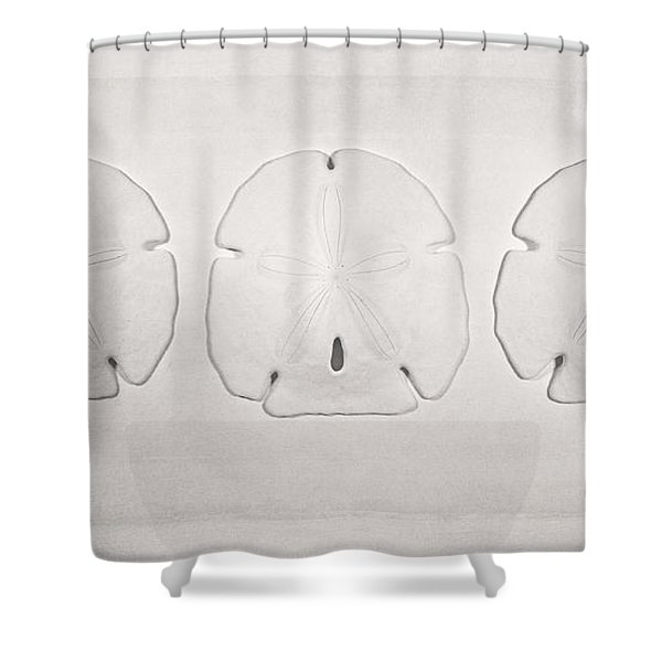 Three Sand Dollars Shower Curtain