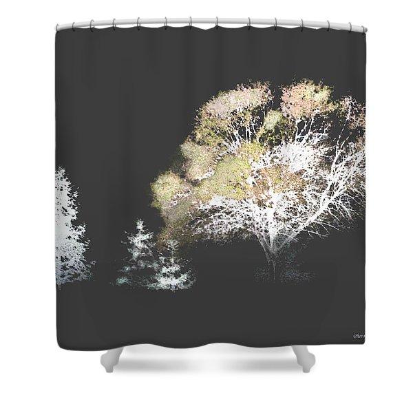 Three Trees In The Dark Shower Curtain