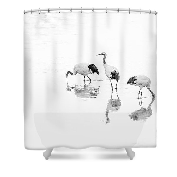 Threesome. Shower Curtain