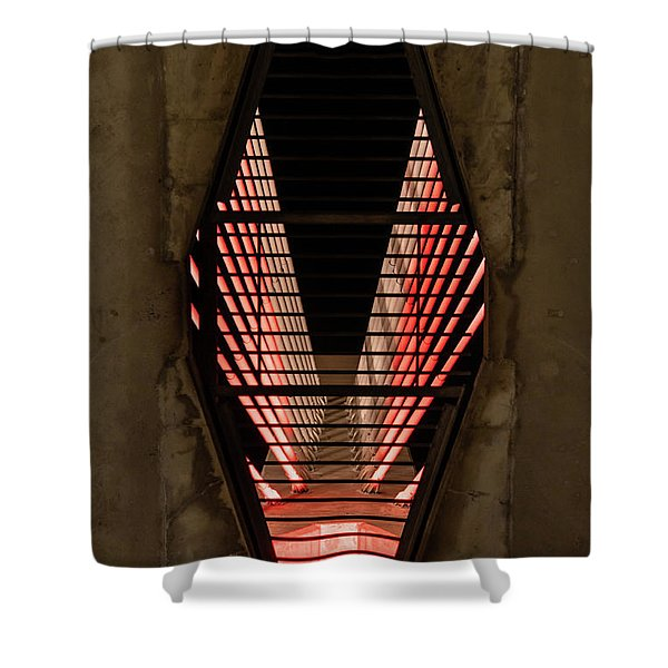Through The Zakim Shower Curtain