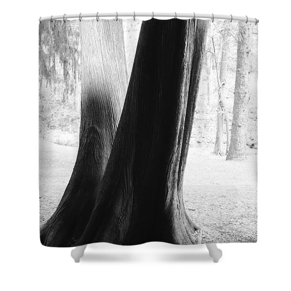 Thrym's Poem Shower Curtain