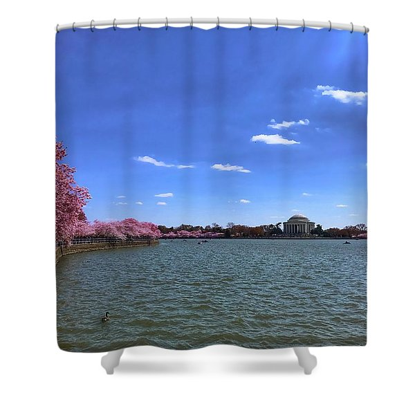 Tidal Basin Cherry Blossoms Shower Curtain