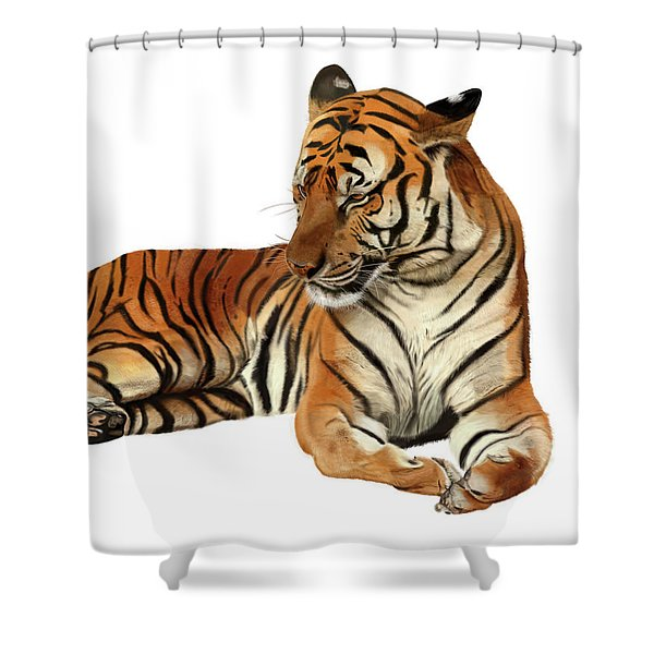 Tiger In Repose Shower Curtain