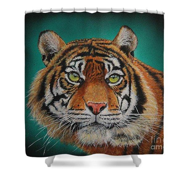 Tiger Portrait......amur Tiger Shower Curtain