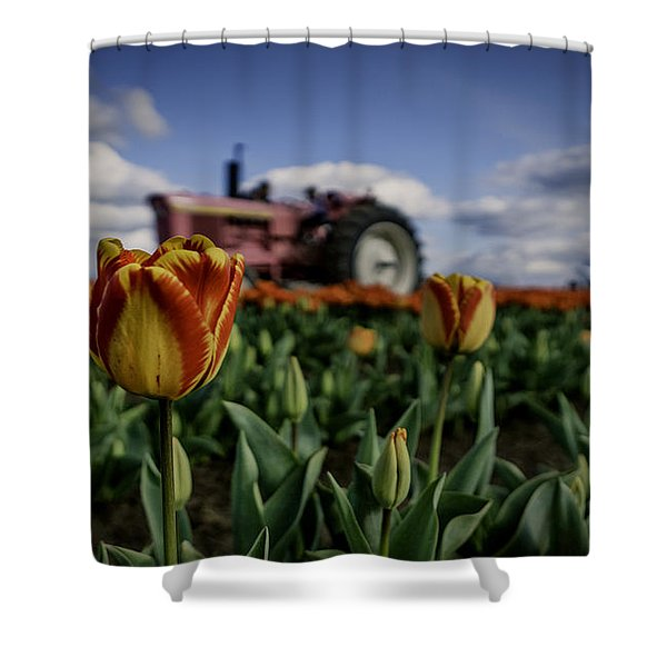Tiger Tulip Shower Curtain