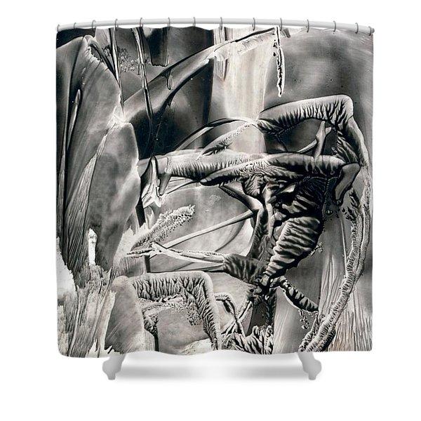 Tigerbug Shower Curtain