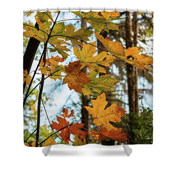 Time Of Change Shower Curtain