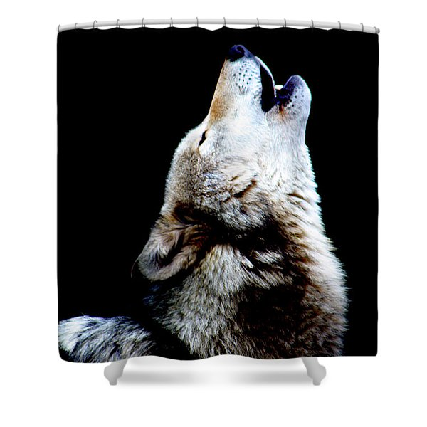 Time To Howl Shower Curtain