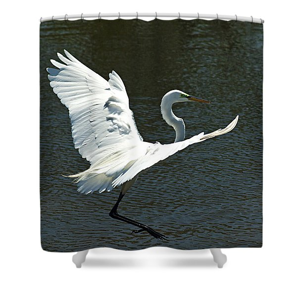 Time To Land Shower Curtain