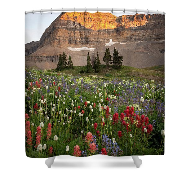Timpanogos Bouquet Shower Curtain