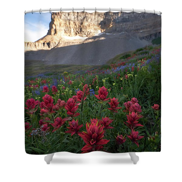 Timpanogos Paintbrush Shower Curtain