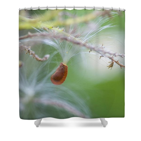 Tiny Seed Shower Curtain