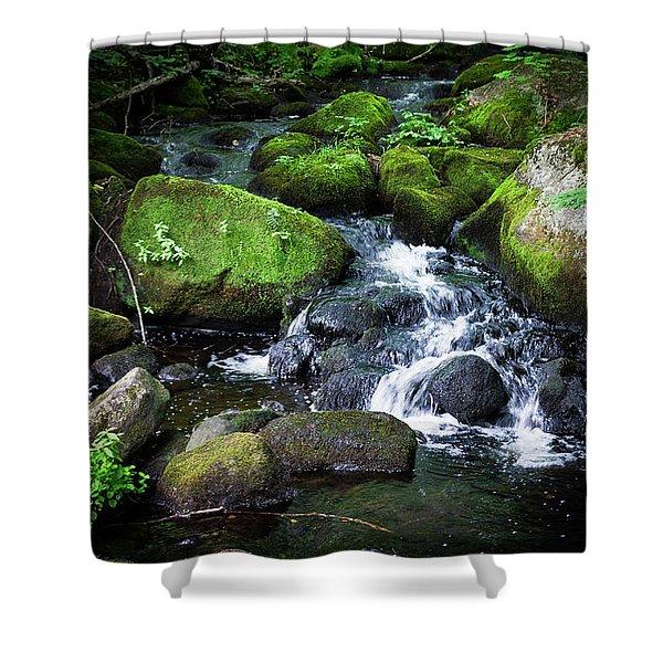 Tiny Waterfall - Ellsworth Maine Shower Curtain