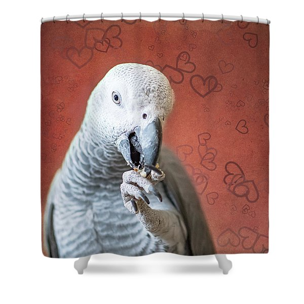 To Be Owned By A Grey Is To Know Love Shower Curtain